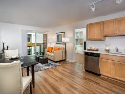 Metro Village Apartments near Takoma Park - interior